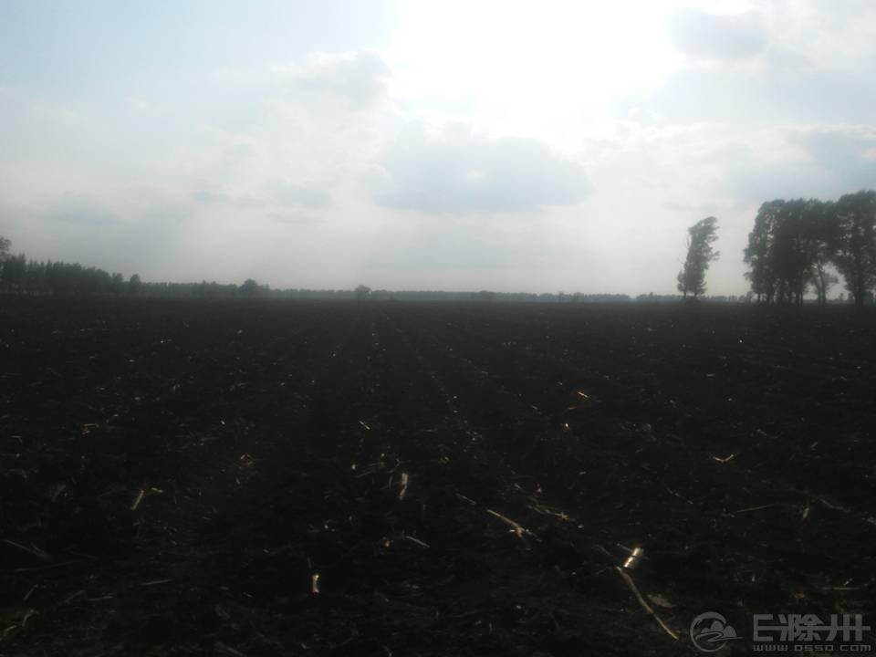 黑黝黝的土地------肥沃,祖国的大粮仓