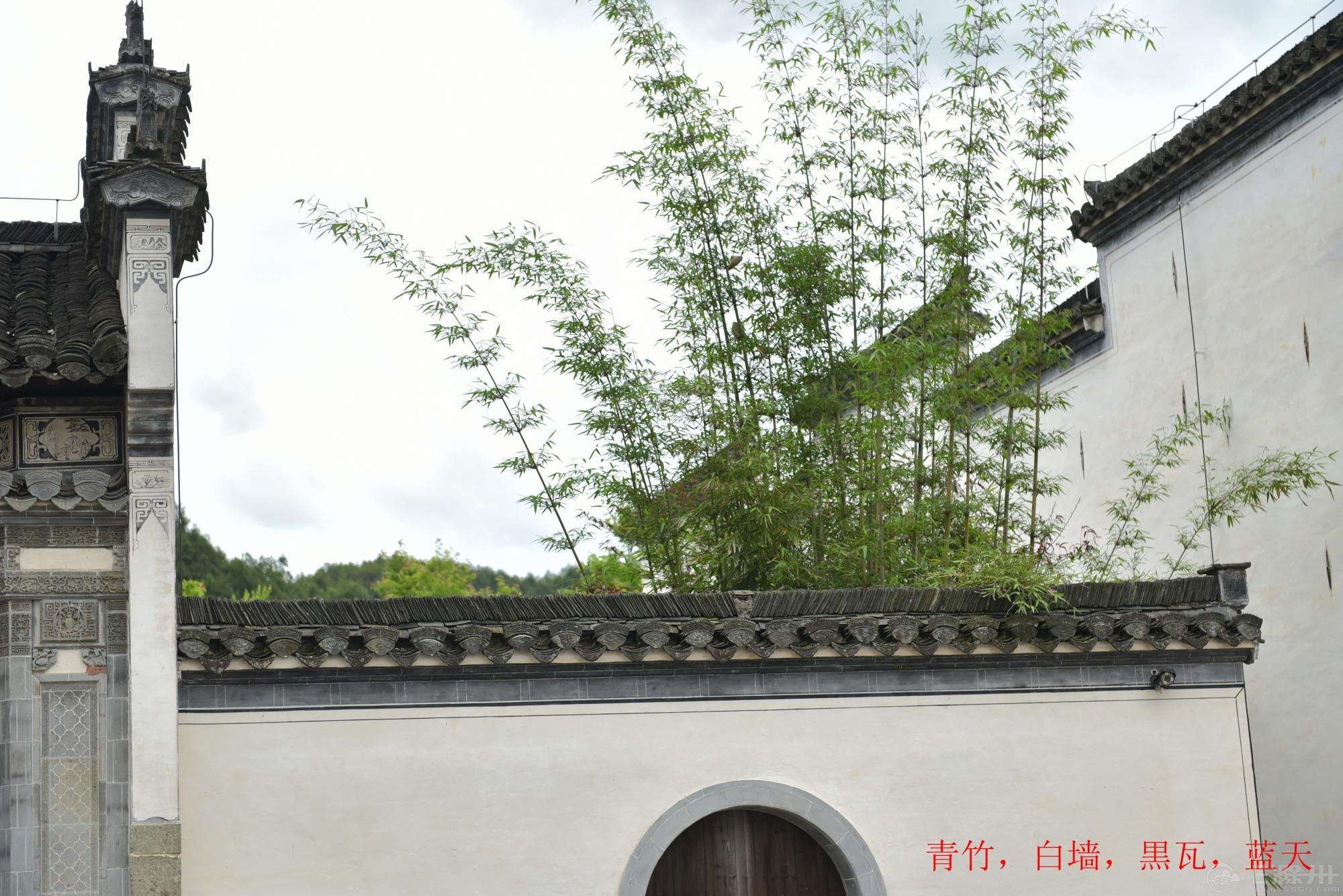 DSC_9888_副本_副本.jpg
