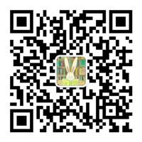 微信图片_20180615145646_副本.jpg