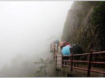 雨 雾 老 君 山